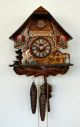 Cuckoo Clock 76/9 One day